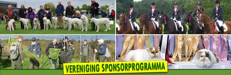 Banner Sponsorprogramm