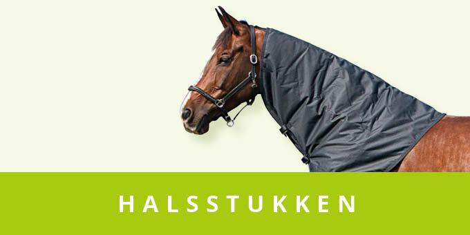 original_images/Halsstukken.f39d05.jpg