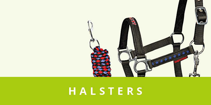 original_images/Halsters.7881c9.jpg