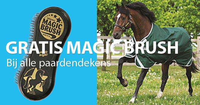 magic brush desk