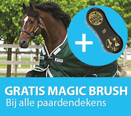magic brush tablet