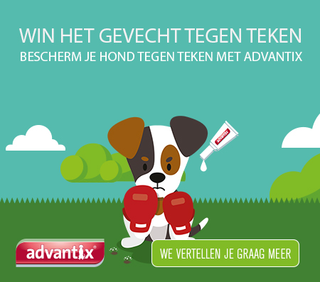 advantix-Homepage-yab.jpg