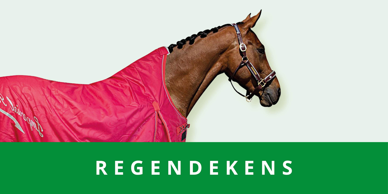 original_images/categoriebanner_regendekens.3ad2ff.jpg