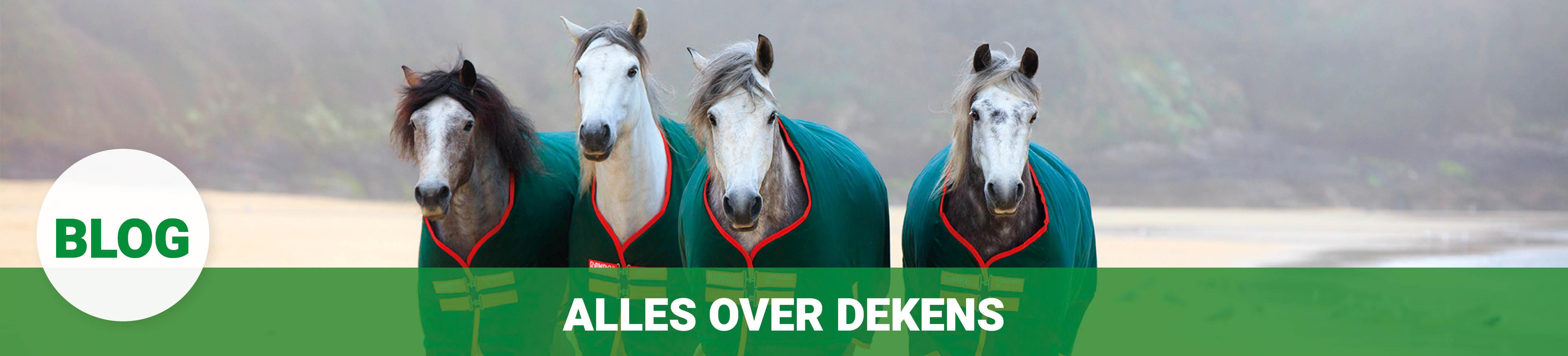 merkenshopbanner_blogs_allesover_paardendekens.jpg